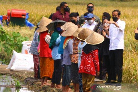 Presiden Jokowi tinjau proses tanam padi di Kabupaten Malang