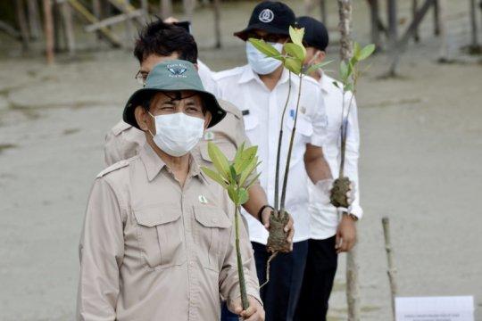BRGM: Masyarakat penerima manfaat langsung rehabilitasi mangrove