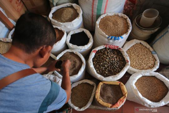 Kementan pacu penggunaan aplikasi IMACE, permudah ekspor pertanian