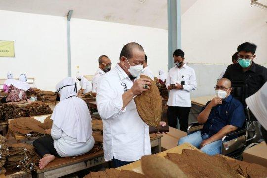 Ketua DPD RI minta pemerintah perhatikan nasib petani tembakau