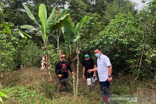 Penelitian awal gempa Samosir digagas bersama BMKG-USK-Aceh Besar