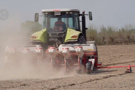 Petani kapas di Uzbekistan mulai tabur benih