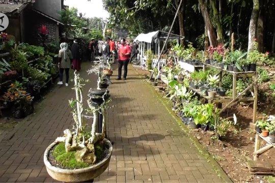 Kampoeng Flora, wisata tanaman hias di Kota Semarang