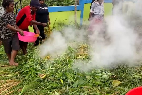 Muslim Wamena langsungkan tradisi Ramadhan dengan bakar batu
