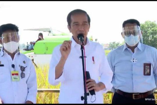 Presiden: Tidak perlu impor jika panen padi baik