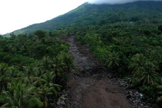 Kalsel laksanakan revolusi hijau, 1 juta pohon ditanam serentak