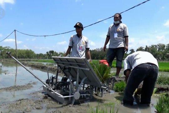 Pemkab Madiun dahulukan subsidi pupukuntuk petani kecil