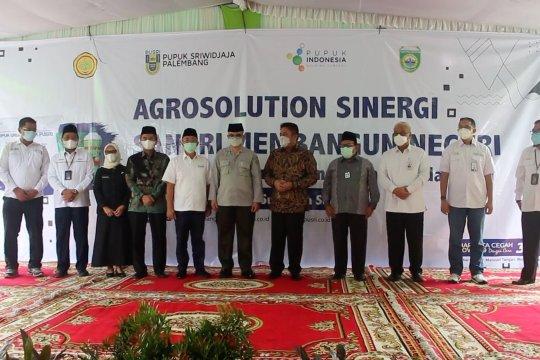Agro Solution solusi peningkatan produktivitas hasil pertanian Sumsel
