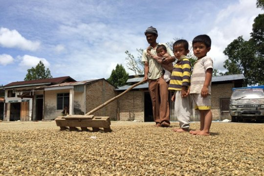 Keeping the Sumatran coffee business fragrant amid COVID-19 pandemic