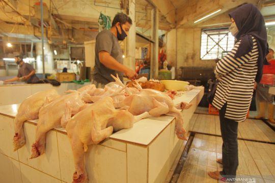 Harga telur dan daging ayam Jakarta turun karena pasokan melimpah