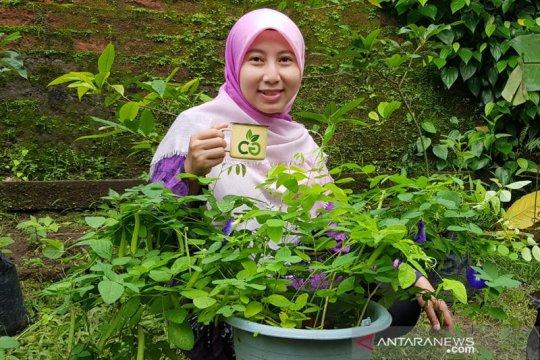 Peneliti: Agrobisnis tetap menjanjikan walaupun di masa pandemik