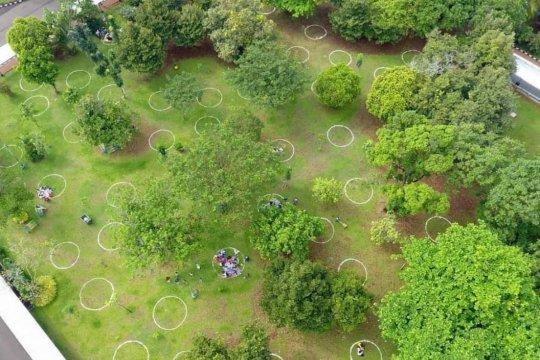 TMS Ragunan buat lingkaran khusus di taman antisipasi kerumunan