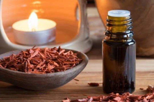 Manfaat kayu cendana merah, atasi sakit kepala hingga sembuhkan luka