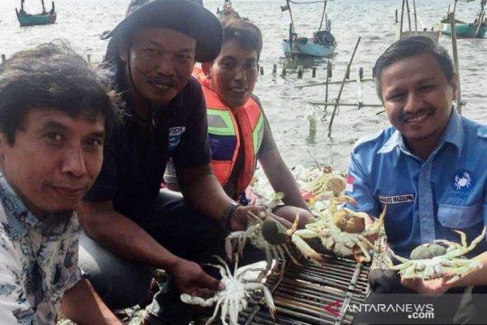 Program OSF bantu Rp900 juta kelola rajungan Indonesia berkelanjutan
