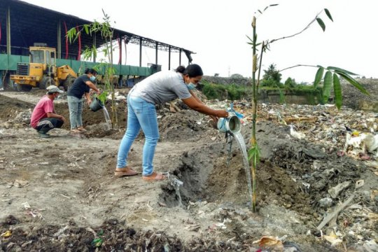 Program Merah Putih Hijau tanam pohon Bambu di TPA Temesi Gianyar-Bali