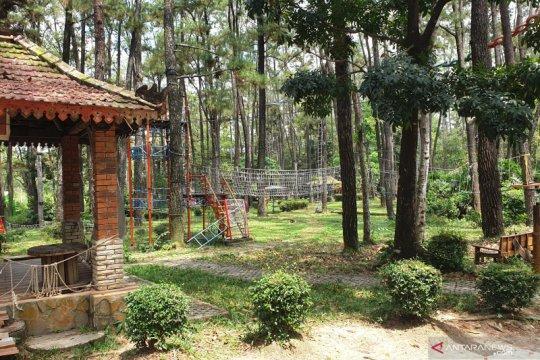 Mengemas Desa Burai menjadi kawasan ekowisata berkelas dunia