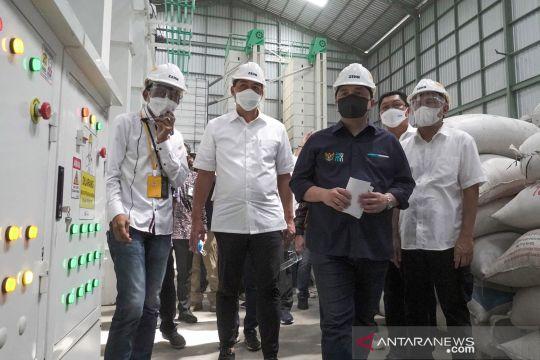 Teten terapkan 3 strategi kembangkan sentra pengolahan beras terpadu