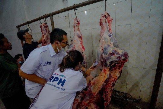 Berdikari kerja sama dengan RPH jaga suplai-harga daging sapi