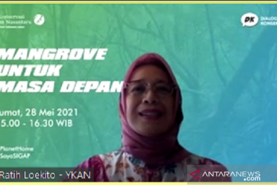 Yayasan KAN dorong pemulihan mangrove untuk mitigasi perubahan iklim