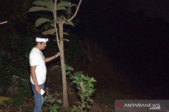 Wakil Ketua Komisi IV DPR desak penindakan perusak hutan di Karawang