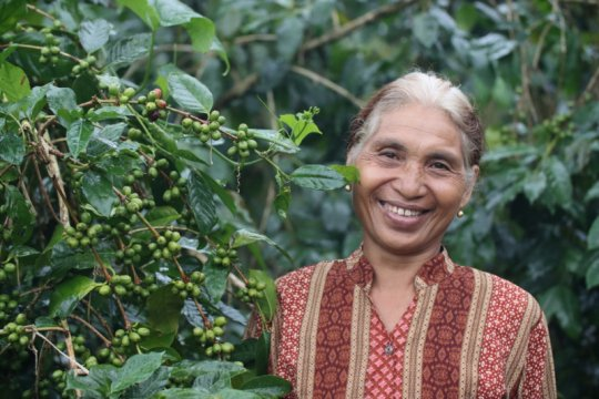 Kopi Flores dari, oleh, dan untuk kesejahteraan petani lokal