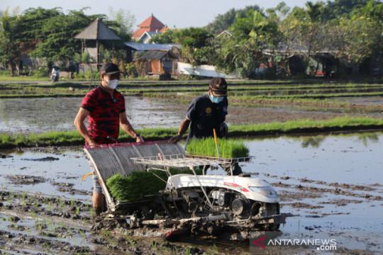 Mentan pilih produk BUMN Pertani salurkan bantuan benih padi ke Bekasi