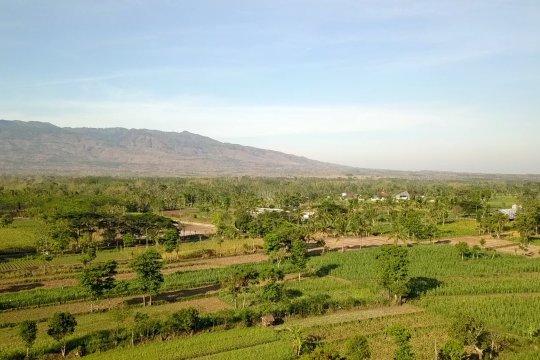 Dewi Argopuro mengangkat potensi wisata di lereng Argopuro