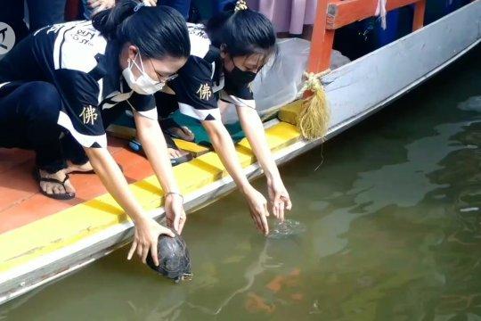 Waisak umat Buddha Jambi lepasliarkan lele dan kura-kura