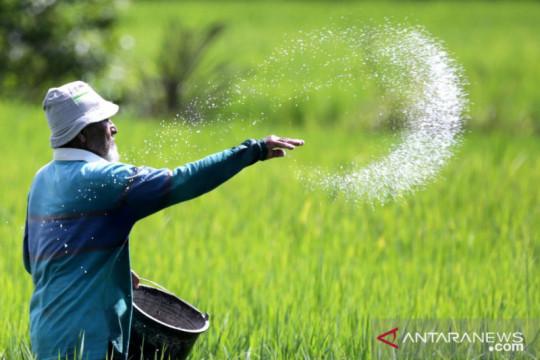 BPS: Nilai Tukar Petani naik 0,19 persen pada Juni 2021