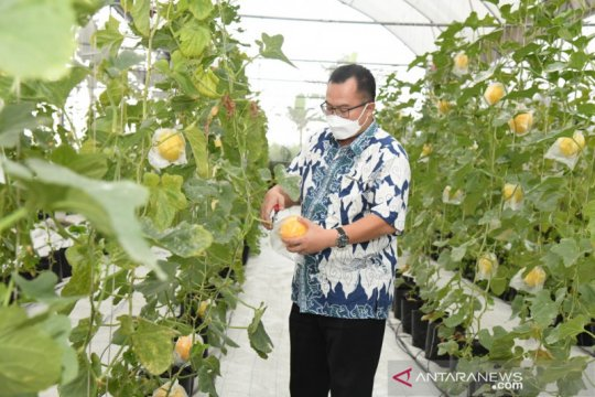 IPB University dorong mahasiswanya jadi petani milenial