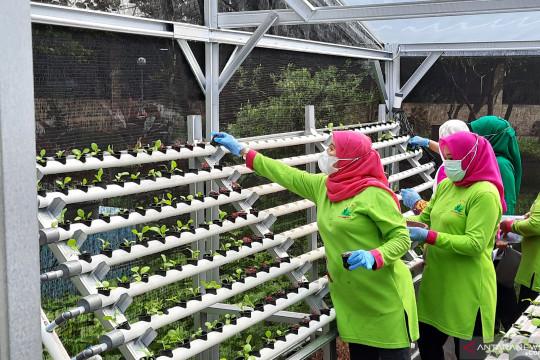 Jakarta Timur gelar tanam serentak peringati Hari Lingkungan Hidup