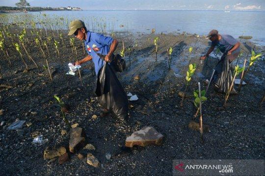 Aksi bersih pantai memperingati Hari Lingkungan Hidup Sedunia