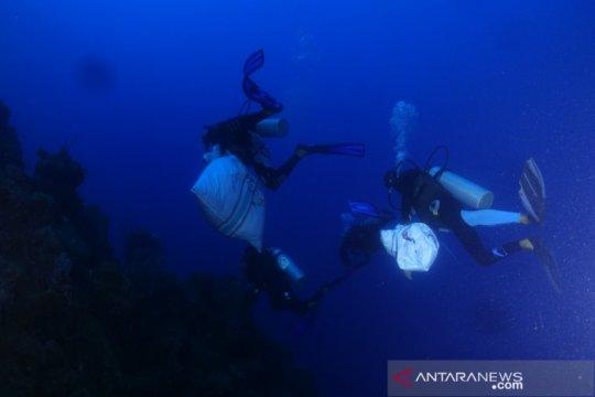 Pegiat lingkungan bersih-bersih sampah plastik di habitat hiu paus