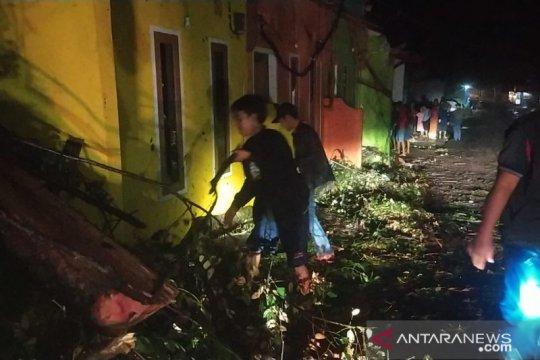 Hujan disertai angin kencang sebabkan pohon tumbang di Sukabumi