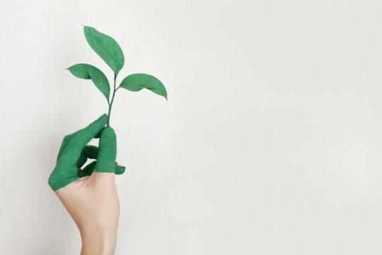 Hari Lingkungan Hidup Sedunia momentum anak muda beraksi