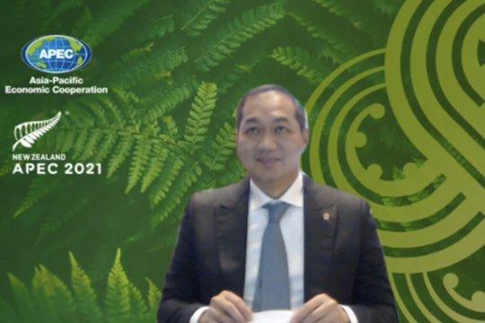 Mendag Lutfi dorong anggota APEC perkuat fasilitas perdagangan vaksin