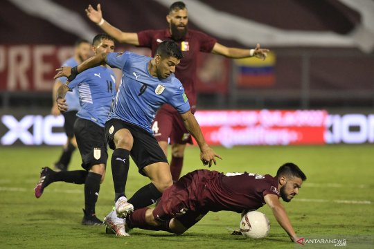Uruguay ditahan imbang tanpa gol di markas Venezuela