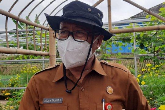 Pemprov Banten salurkan pupuk subsidi di 8 kabupaten dan kota