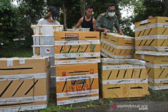 Ribuan burung selundupan dilepasliarkan ke Cagar Alam Rawadano