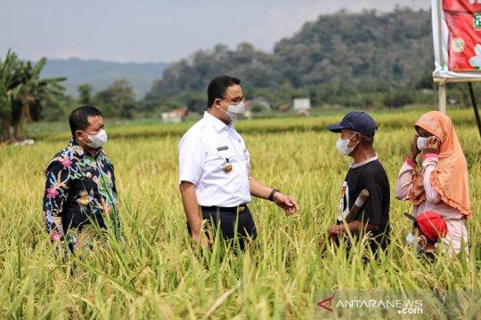 "Anies ""berburu"" beras hingga ke Sumedang Jawa Barat"