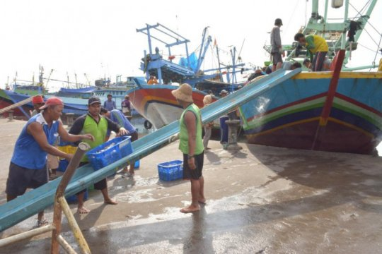 KKP: Pembangunan Pelabuhan Perikanan Pekalongan tanggulangi banjir rob