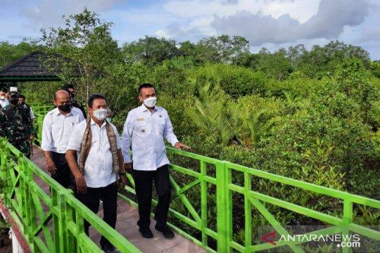Apar Mangrove Park, antara kelestarian alam dan destinasi wisata