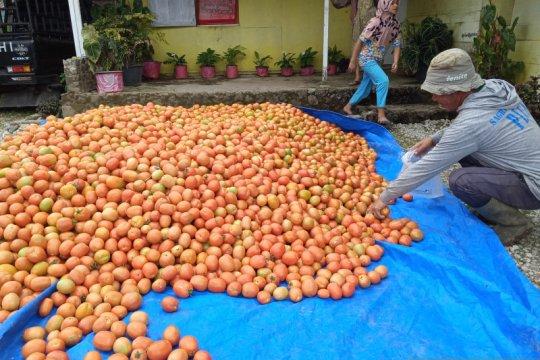 Dinas Pangan Kota Solok prioritaskan mutu dan keamanan pangan