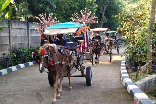 Plt Wali Kota Jakarta Selatan ingin ada bansos untuk kuda pekerja