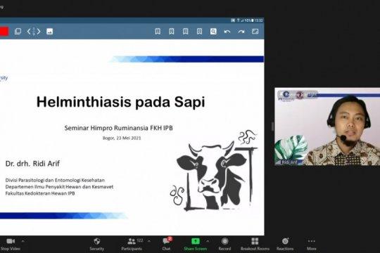 IPB bahas helminthiasis pada sapi, tingkatkan pengetahuan masyarakat