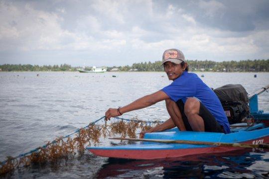 KKP ajak masyarakat gali potensi komoditas rumput laut