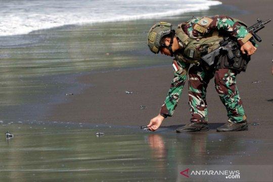 Marinir Indonesia dan AS melepasliarkan tukik bersama