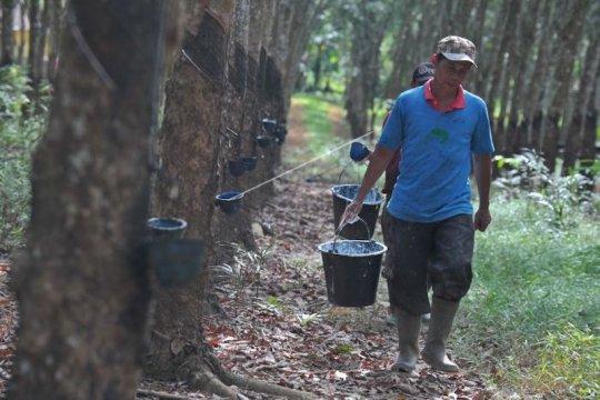 Nilai ekspor Sumatera Selatan merosot Mei 2021