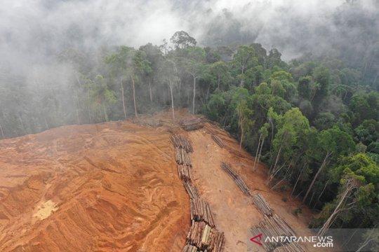 AS akhiri bantuan untuk Kamboja karena deforestasi, penargetan aktivis