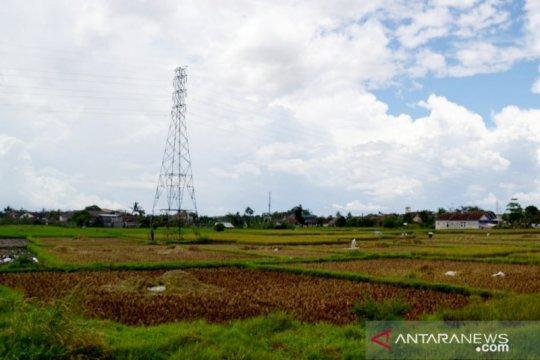 ASN Bogor ditarget beli 850 ton beras lokal untuk berdayakan petani